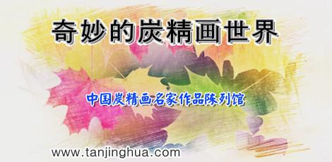 奇妙的中国炭精画